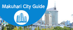 NEW CITY GUIDE